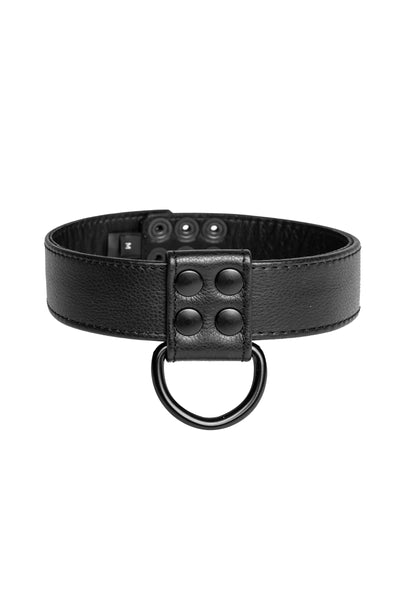 Black leather D-ring collar