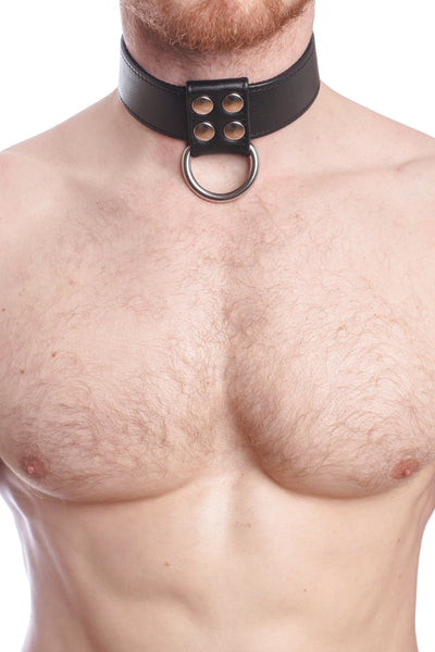 Model wearing black leather and stainless steel D-ring collar