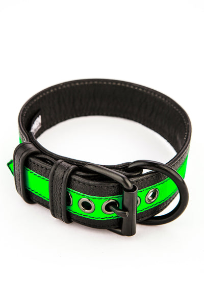 Fluro green stripe leather pup collar