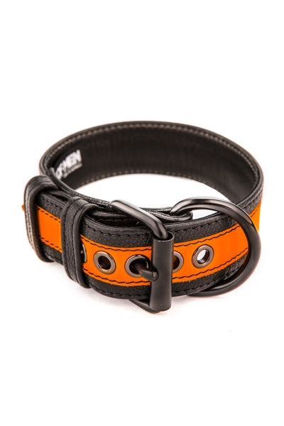 Fluro orange stripe leather pup collar
