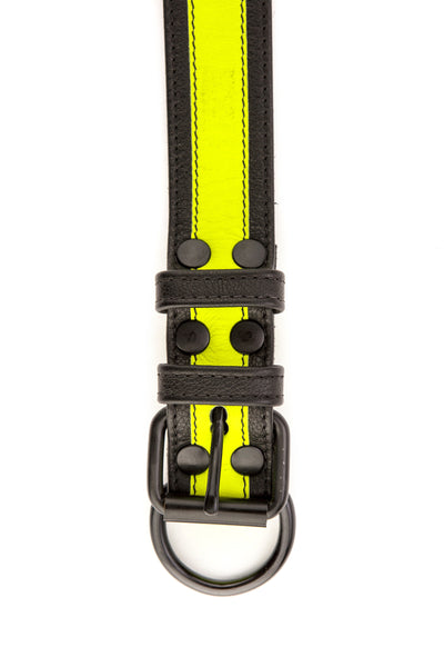 Fluro yellow stripe leather pup collar