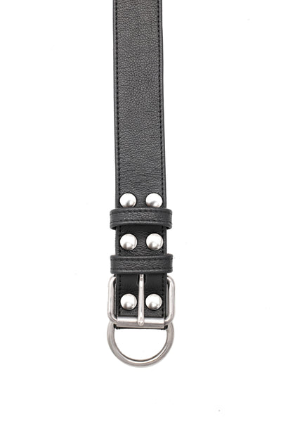 Black leather pup collar with stainless steel buckle and D-ring
