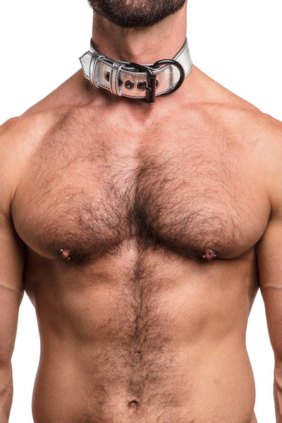 Model wearing metallic silver leather pup collar