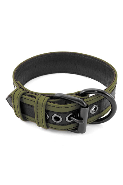 Army green leather racer stripe pup collar