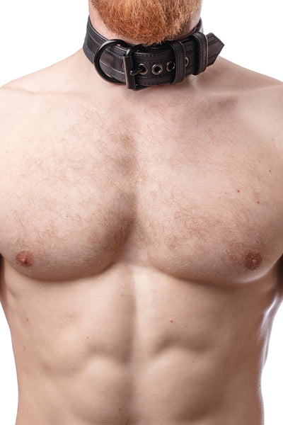 Model wearing black racer stripe leather pup collar with matt black buckle and D-ring