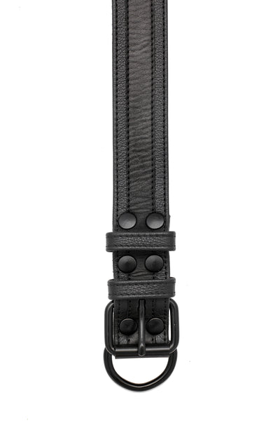 "1.5"" black racer stripe leather pup collar with matt black metal buckle and D-ring"