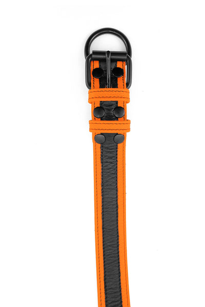 Orange leather racer stripe pup collar