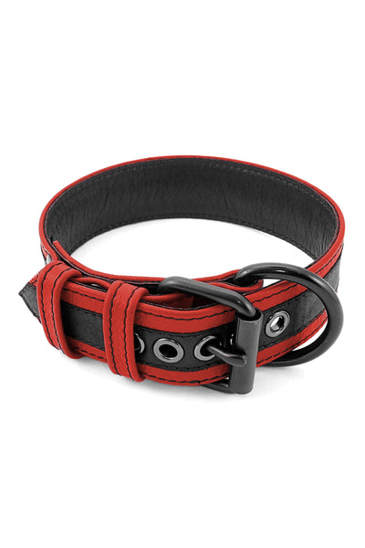 Red leather racer stripe pup collar