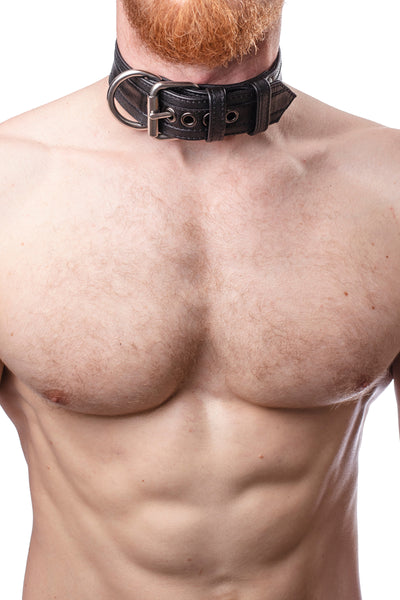 Model wearing black racer stripe leather pup collar with stainless steel buckle and D-ring