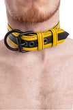 Model wearing black and yellow leather racer stripe pup collar