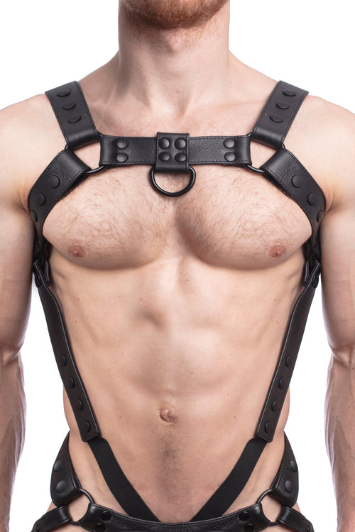 Model wearing a black leather bulldog harness and connector with black hardware. Connector attached to a cockring. Front.