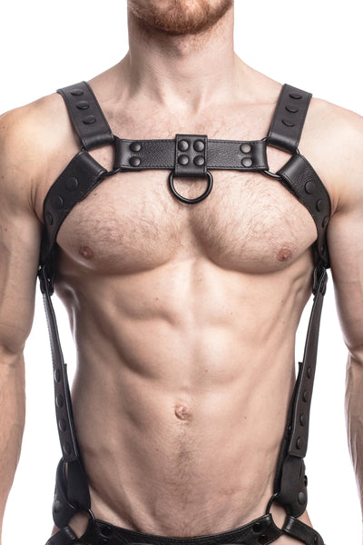 Model wearing a black leather bulldog harness and connector with black hardware. Connector attached to a jockstrap. Front.