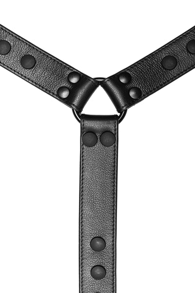 Black leather bulldog harness connector with black hardware. Close up.