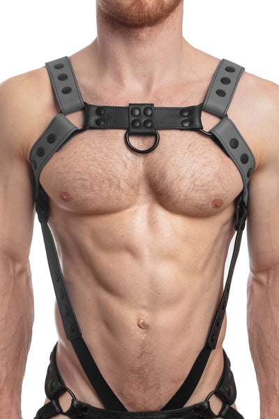 Model wearing a grey leather bulldog harness and connector with black hardware. Connector attached to a cockring. Front.