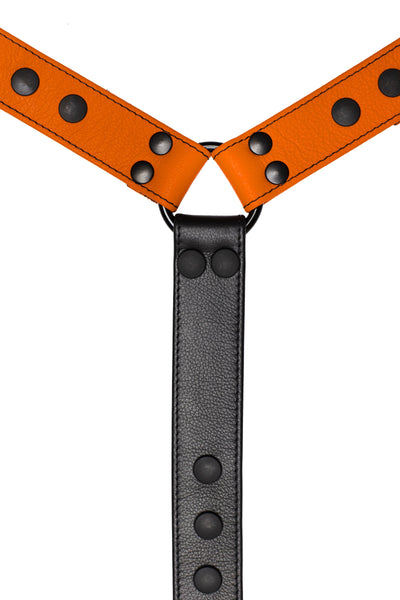 Orange leather bulldog harness connector with black hardware. Close up.