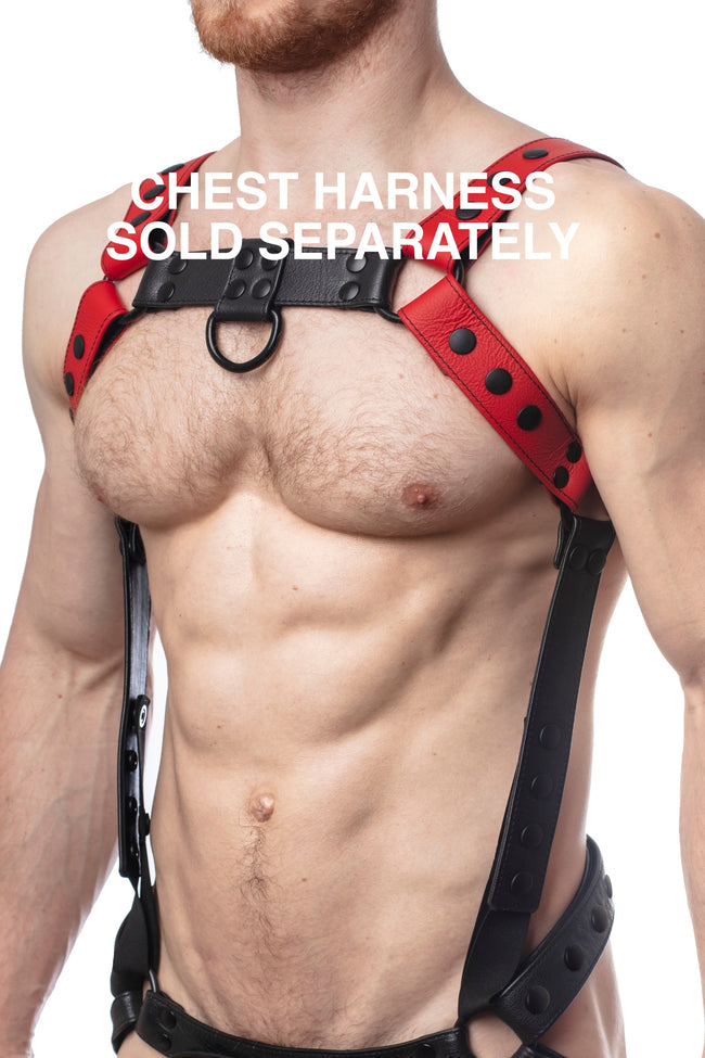 Chest harness sold separately. Model wearing a red leather bulldog harness and connector with black hardware.