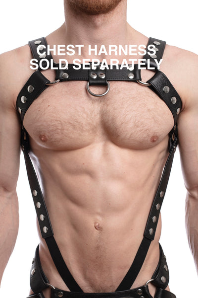 Chest harness sold separately. Model wearing a black leather bulldog harness and connector with stainless steel hardware.