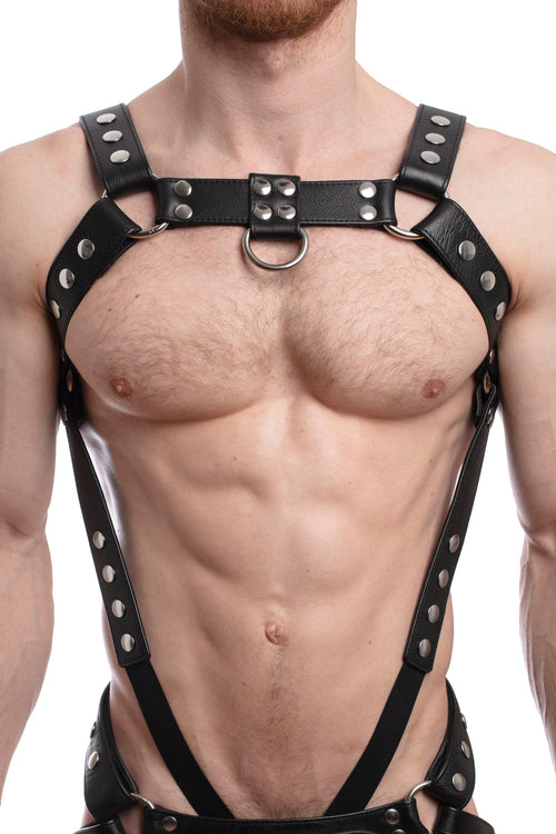Model wearing a black leather bulldog harness and connector with stainless steel hardware. Connector attached to a cockring. Front.