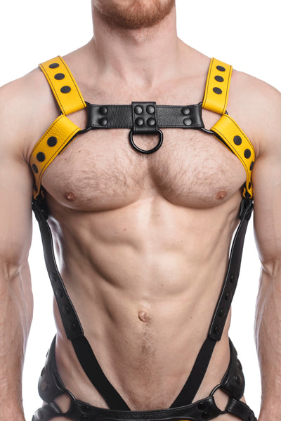 Model wearing a yellow leather bulldog harness and connector with black hardware. Connector attached to a cockring. Front.