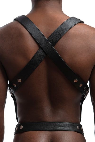 Model wearing stainless steel universal x harness back view