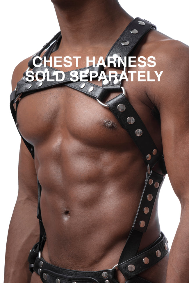 Chest harness sold separately. Model wearing a black leather universal x harness and connector with stainless steel hardware.