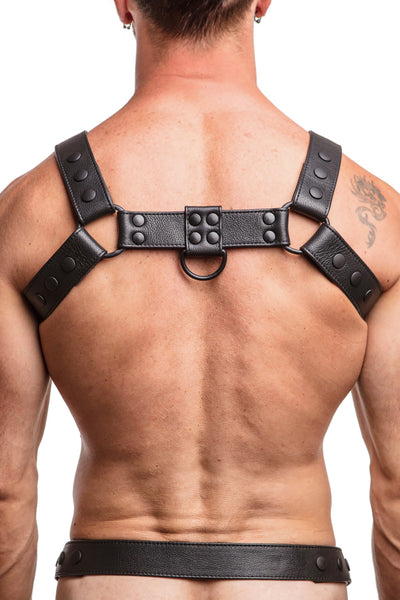 Model wearing black leather bulldog harness with black hardware. Back.