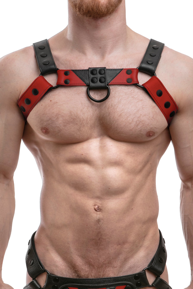 Model wearing a red leather chevron bulldog harness