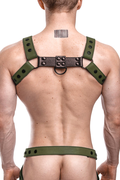 Model wearing an army green leather bulldog harness with black hardware. Back.