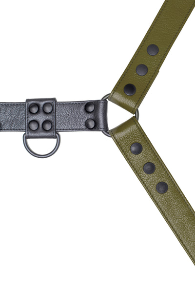 Army green leather bulldog harness with black hardware. Close up.