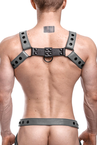 Model wearing a grey leather bulldog harness with black hardware. Back.