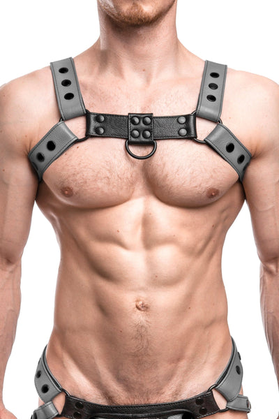 Model wearing a grey leather bulldog harness with black hardware. Front.