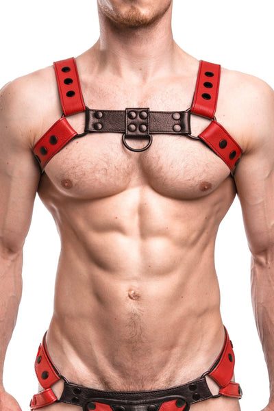 Model wearing a red leather bulldog harness with black hardware. Front.