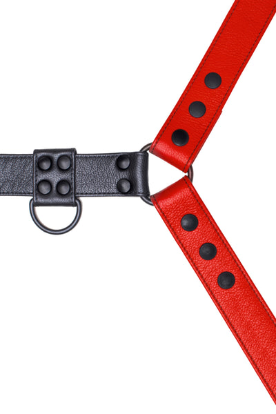 Red leather bulldog harness with black hardware. Close up.