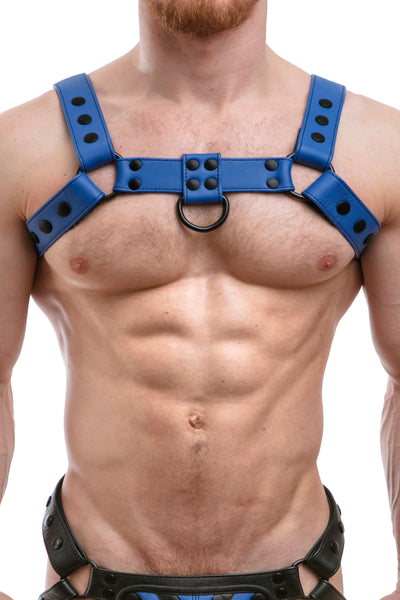 Model wearing full blue leather bulldog harness. Front