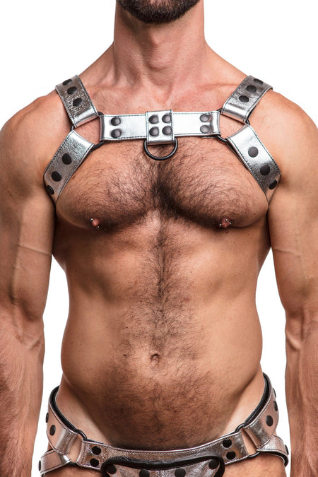 COMBAT BULLDOG COCKSTRAP - Stainless Steel