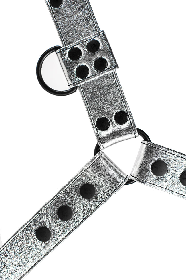 Metallic silver leather bulldog harness