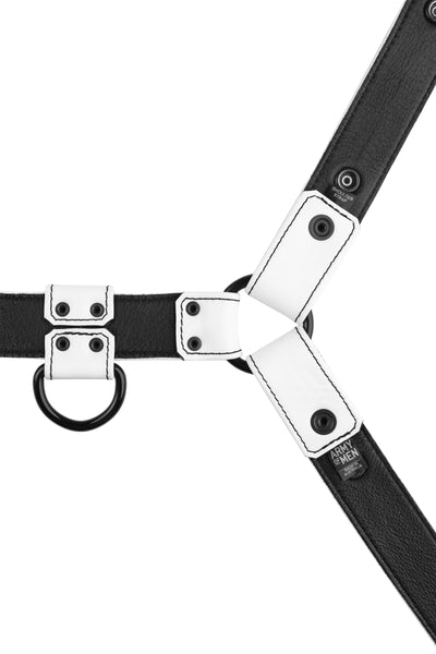 Product photo of a white leather bulldog harness with black hardware. Back view.