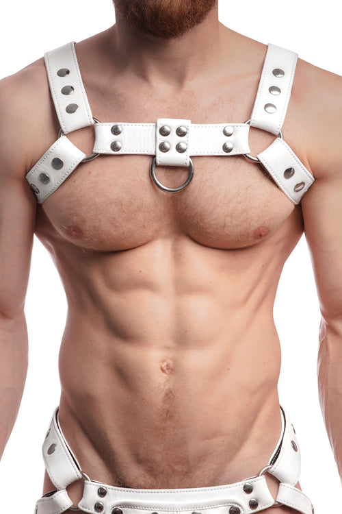 Model wearing a white leather bulldog harness with stainless steel hardware. Front view.