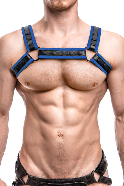 Model wearing a blue leather renegade bulldog harness