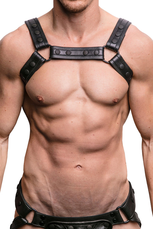 Model wearing black renegade bulldog harness front