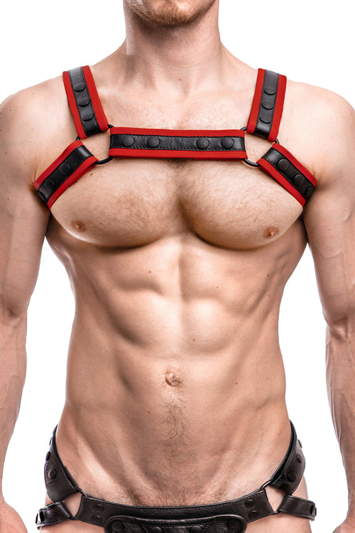 Model wearing a red leather renegade bulldog harness