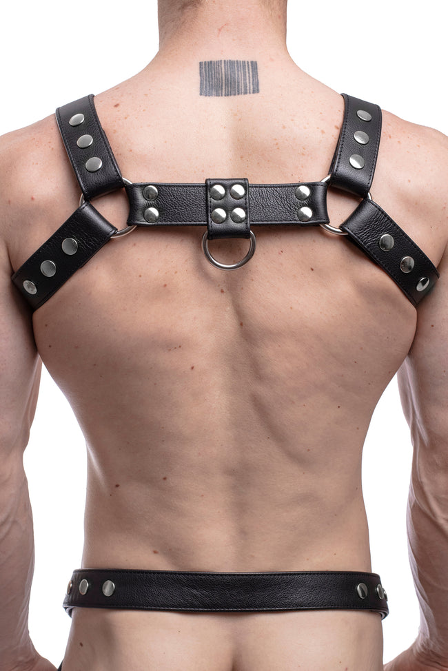 Model wearing a black leather bulldog harness with stainless steel hardware. Back.