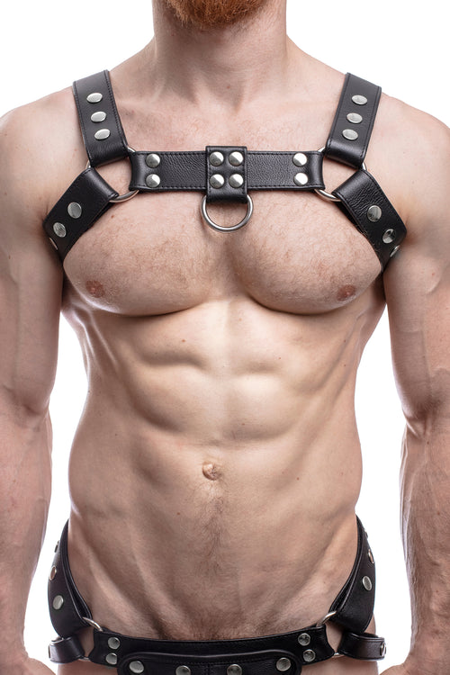 Model wearing a black leather bulldog harness with stainless steel hardware. Front.
