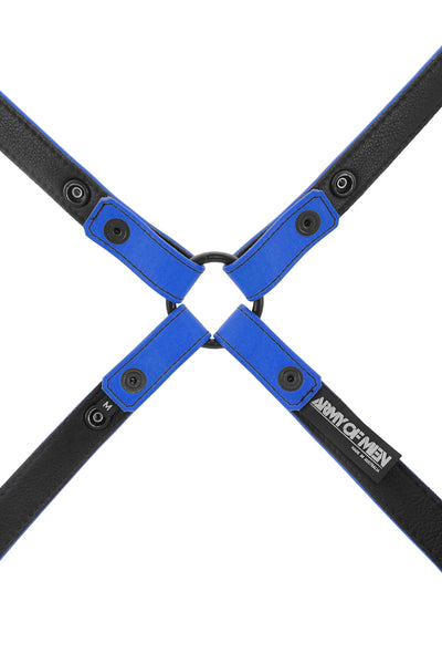 Blue leather shoulder harness lining