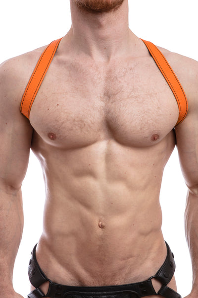 SHOULDER HARNESS - Colour