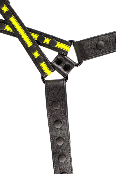 Yellow leather universal x harness