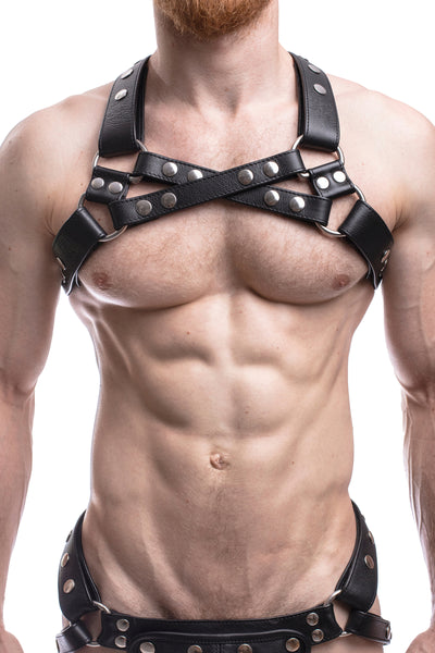 Model wearing black leather universal x harness with stainless steel hardware