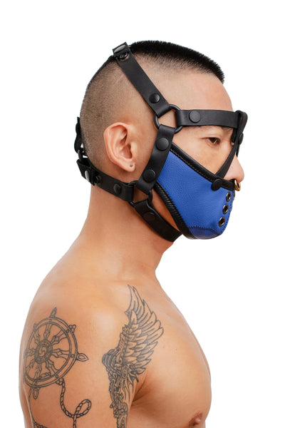 Model wearing black leather head harness and blue muzzle side