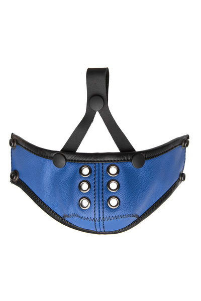 Blue leather muzzle