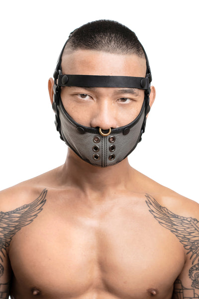 Model wearing black leather head harness and grey muzzle front